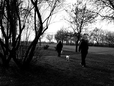 Running heebie-jeebies away - Test 1 - A spasso per il parco impacciato dai farmaci, ma trainato dal cagnolino